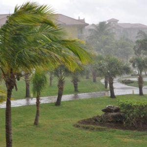 Preparing for hurricane season during COVID-19